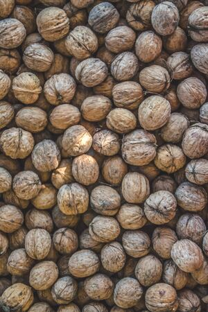 Natural walnut background pattern texture. Abstract walnuts heap pattern background Blurred edges frame Natural food in-shell nuts walnuts pattern backdrop Walnuts in shell background dramatic contrast.