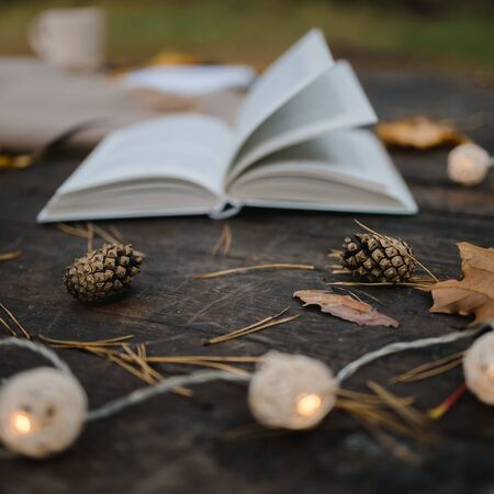 On an old wooden table in an autumn park lies an open book, a plaid, a garland with lights, a cup of yellow leaves and sos cones. Top view, in blur. Autumn warm dark mood, soft focus