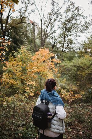 Hiking woman at autumn forest. Backpacker standing in woodland during fall season. Enjoying hike in nature at sunny day.