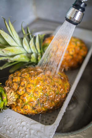 two ripe and juicy pineapples are washed under the tap in the sink. Фото со стока