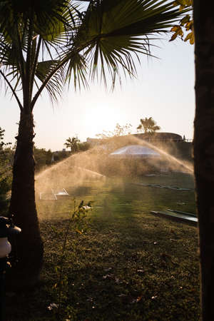 Turkey Alanya, 20 October 2019: A beautiful green lawn park with trees and a golf course is sprayed with an automatic water sprinkler during the hot season at sunrise
