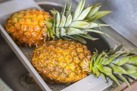 two ripe and juicy pineapples lie in the dryer after washing. 版權商用圖片