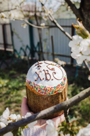 traditional Easter cake in a female hand against the background of a blooming spring tree 免版税图像
