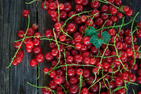 juicy fresh red currants on a dark old wooden background, top view 免版税图像