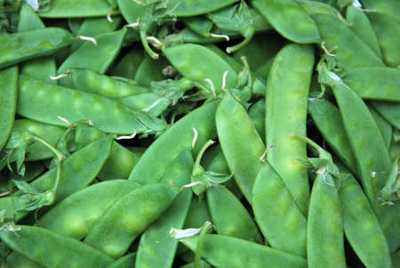 protein source: Green bean Stock Photo