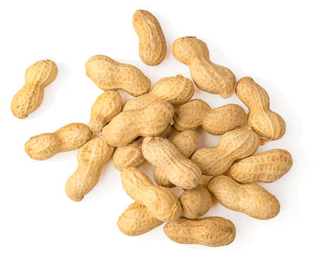peanut isolated on white background Reklamní fotografie
