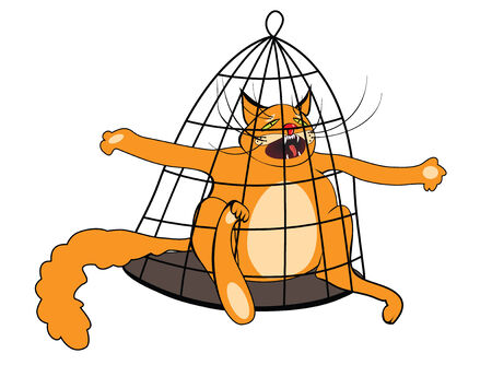 mewing: cat in the cage