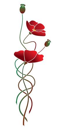 illustration of flowers of poppy Illustration