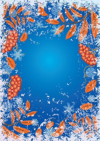 흰 서리: autumnal foliage and berries in the hoarfrost and snow