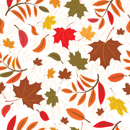 seamless autumnal background with leaves of maple and ash trees