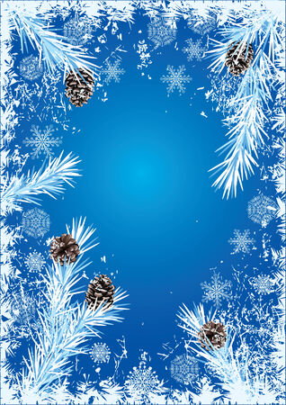 흰 서리:  New Year or Christmas  background with branches of fir