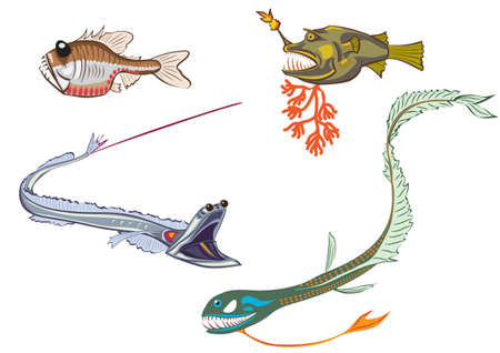 deepsea: stylized illustrations of the deep-sea fishes Illustration