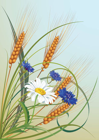 illustration of flowers and ears of wheat Illustration