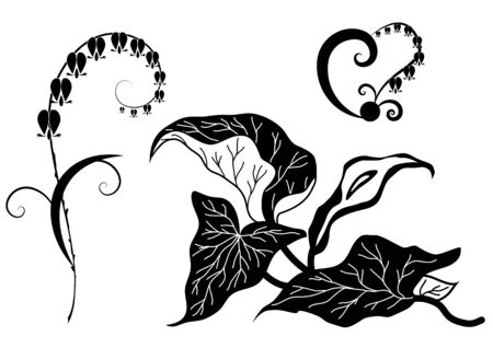 stylized illustration of flowers Dicentra and Kalla Vector