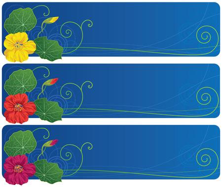 nasturtium: set of the vector banners with nasturtium Illustration