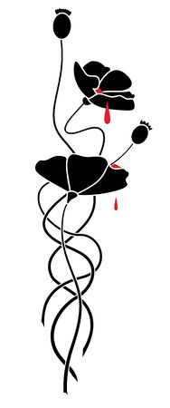 poppy seeds: illustration of flowers of black poppy