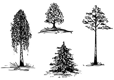 set of the hand draw illustrations of trees Stock Vector - 6660321