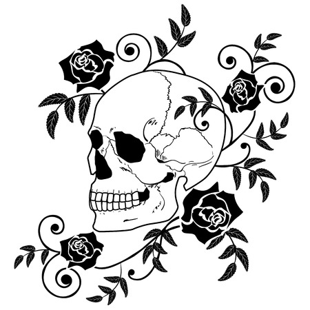 rose tattoo: illustration of the skull and roses in black and white colors