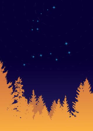 Illustration of constellations Ursa Minor and Ursa Major (Big Dipper) Stock Vector - 7859015