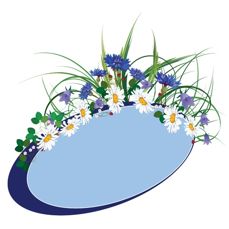 cornflower: vector floral banner with wild flowers