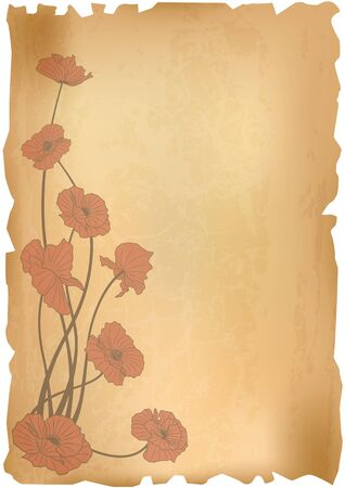 old paper background with poppies photo