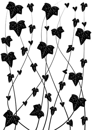 trellis: background with branch of ivy in black and white colors