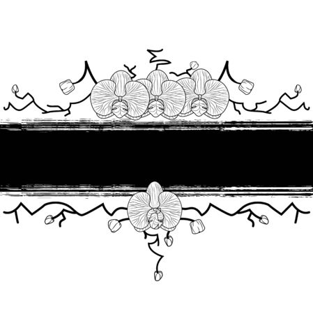 vector banner with orchid in black and white colors Vector