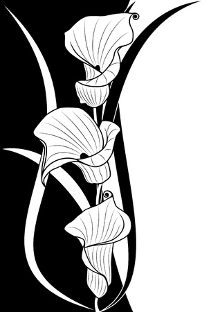 deep-bodied crevalle floral background  in black and white colors  イラスト・ベクター素材