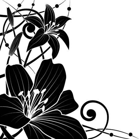 esquineros de flores: Fondo de vector de lirio en colores blancos y negro