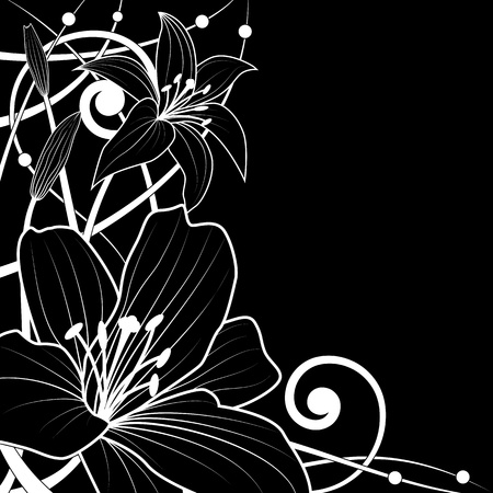 vector background of lily in black and white colors Vector