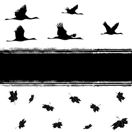 vector background with cranes and maples leaves in black and white colors Vector