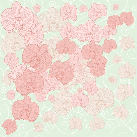 vector background with  orchids flowers in pastel colors (EPS 10) Illustration