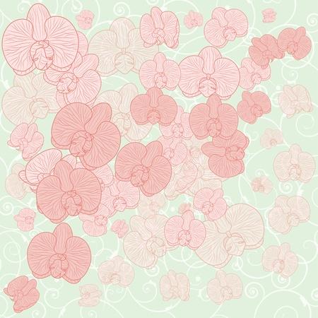 pastel colours: vector de fondo con flores de orqu�deas en colores pastel (EPS 10) Vectores