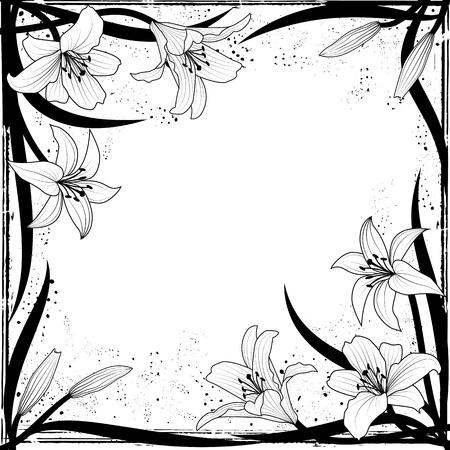 siyah: Siyah ve beyaz renklerde zambak ile vektör çerçeve