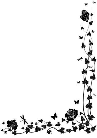 yedra: Rosas y ivy en colores blancos y negro