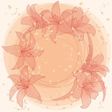 flowers of  lilies  Vector