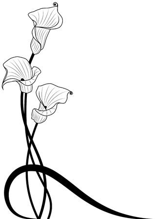 silhouette fleur: Arrière-plan floral crevalle corps profond dans les couleurs noir et blancs Illustration