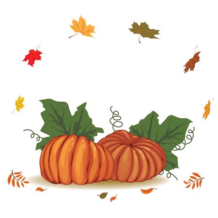 autumnal background with pumpkins and leaf fall  Vector