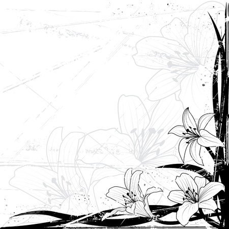 background with lily in black and white colors