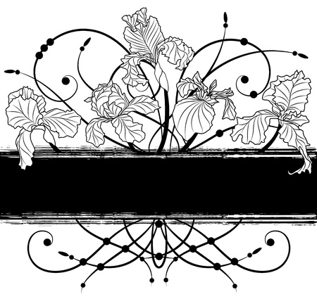 iris flower: vector banner with irises in black and white colors