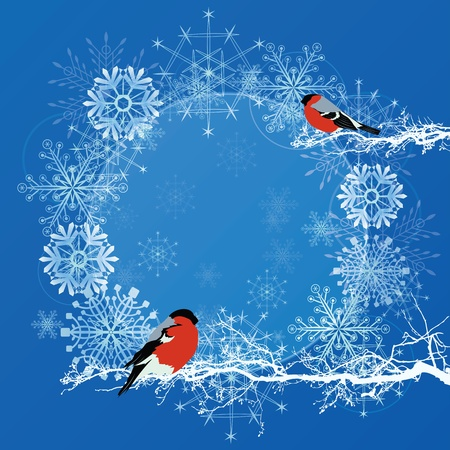 vector abstract background with bullfinches in blue and white colors (EPS 10) 向量圖像