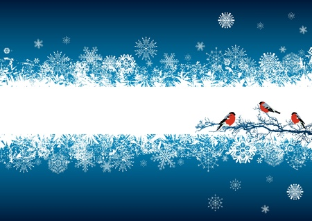 happy holidays card: vector abstract background with bullfinches in blue and white colors