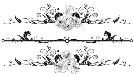 border line: set of the vector floral banners with flowers of hibiscus and poppy