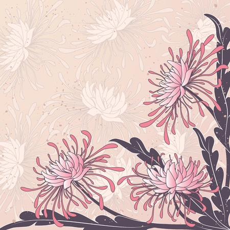 vector floral background with flowers of chrysanthemum