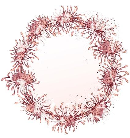 chrysanthemum, grunge floral frame  in pink colors  Illustration