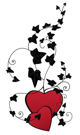 yedra: valentine vector de fondo con una rama de hiedra y el coraz�n