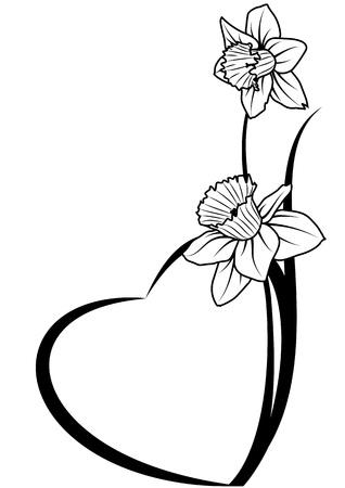 contorno: San Valent�n pancarta con el narciso y el coraz�n Vectores