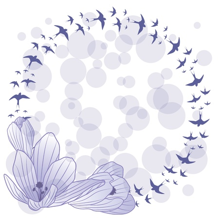 vector frame with flowers of crocus and swallow (EPS 10)