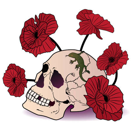 illustration of the skull, lizard and poppies Vector