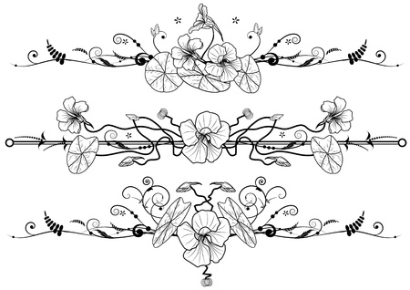 set of floral backgrounds with nasturtium in black and white colors